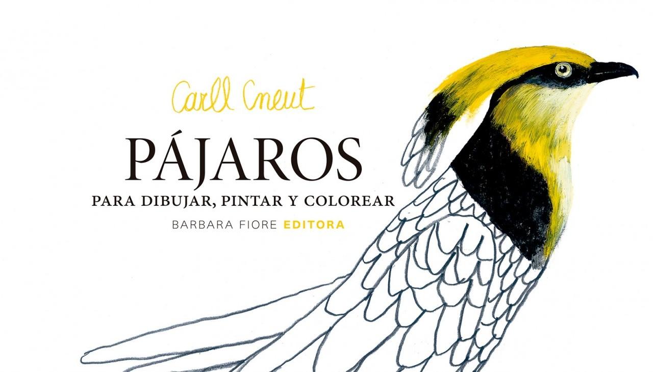 PÁJAROS PARA DIBUJAR PINTAR Y COLOREAR por Carll Cneut - Barbara ...